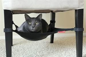 Hamac Sur Pied Pas Cher : un hamac pour chat va donner grand confort votre animal ~ Dailycaller-alerts.com Idées de Décoration