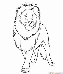 How to draw a cartoon lion | Step by step Drawing tutorials