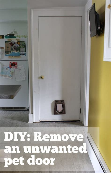 simple wall bed how to patch a in a hollow door merrypad