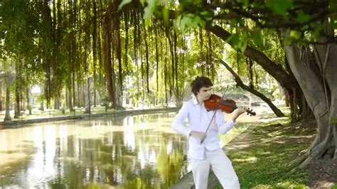 Wedding Violinist And More