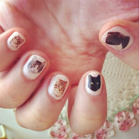 cat nail designs our 5 favorite cat centric manicures catster