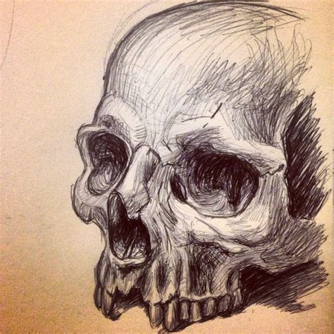 Human Skull Sketch Art Pinterest