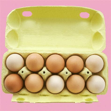 Eggs In The Fridge Or Cupboard where to store eggs this is the best place to store your
