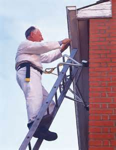 Ladder Safety Harness