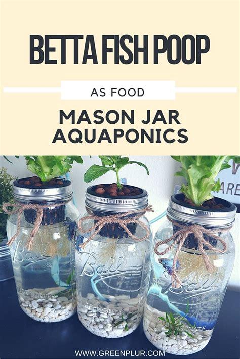 17 best ideas about jar garden on