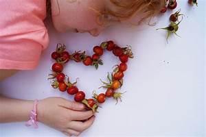 Herzen Basteln Mit Kindern : basteln mit kindern hagebutten herzen f deln schwesternliebe wir ~ Frokenaadalensverden.com Haus und Dekorationen