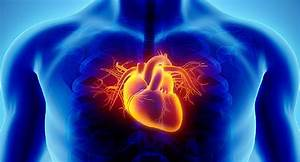 11 Strange Heart Disease Causes And Risk Factors