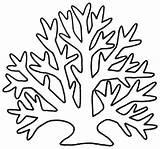 Seaweed Coloring Printable Educative Branch Printables Plant Drawing Ocean Introduce Educativeprintable sketch template