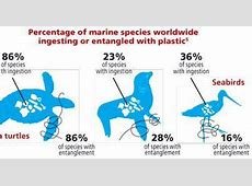Saving Our Oceans Petition
