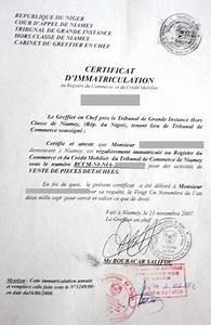 Certificat D Immatriculation Vente : eregulations niger ~ Medecine-chirurgie-esthetiques.com Avis de Voitures