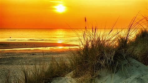 Orange Sunset Over Sea. Summer Stock Footage Video (100% ...