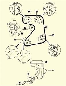 Engine And Distributor Timing - Passionford