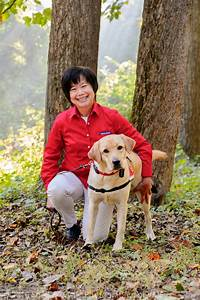 dog trainers in leesburg va dog day afternoon With best dog training sites