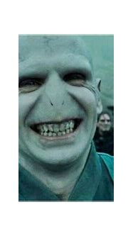Harry Potter: 5 Things Voldemort Was Right About (& 5 He ...