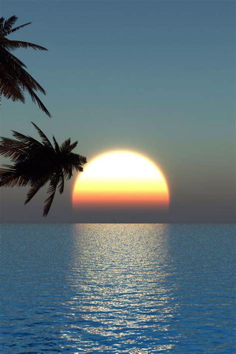 watching  beautiful tropical sunrise