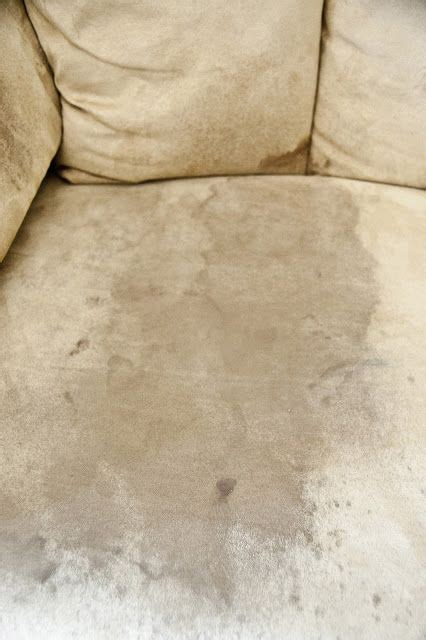 cleaning microfiber couch 1 spray couch with rubbing