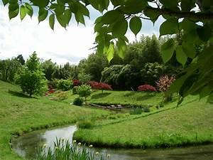 Kleiner Japanischer Garten : kostenlose foto rasen wiese blume teich gr n dschungel botanik japanischer garten ~ Markanthonyermac.com Haus und Dekorationen