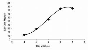 Fetal Programming  Cow Nutrition And Its Effects On Calf