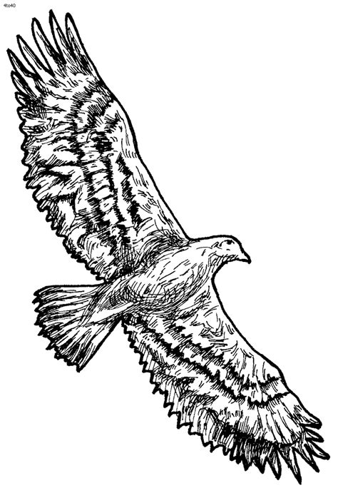 coloring pages  totem poles coloring home