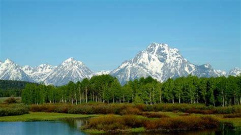 Grand Teton National Park  Moose  Travel Wyoming That's Wy