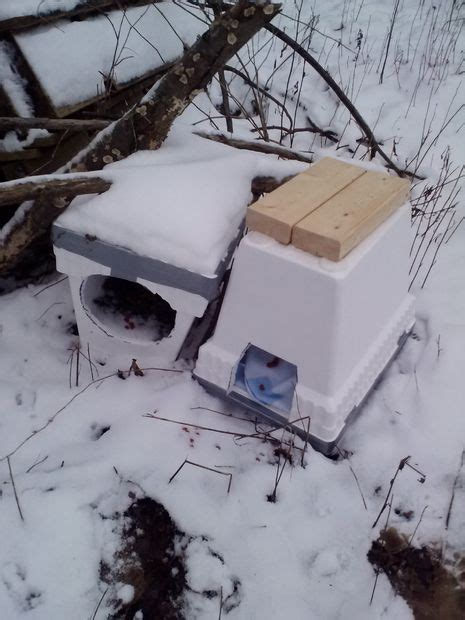 Easy Winter Cat Shelter