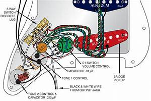 5 Best Images Of American Standard Stratocaster Wiring-diagram