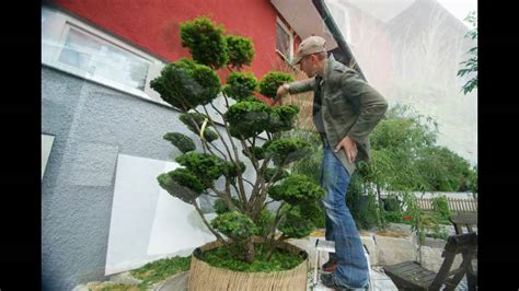 Garten Bonsai Winterfest Machen by Gartenbonsai Bonsaischnitt