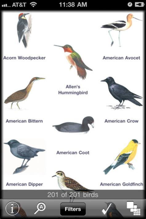 local birds of southern california app for ipad iphone