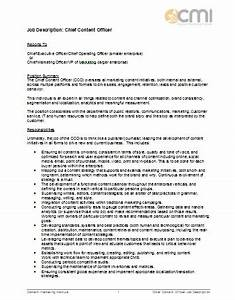 job description format for chief content officer With training officer job description template