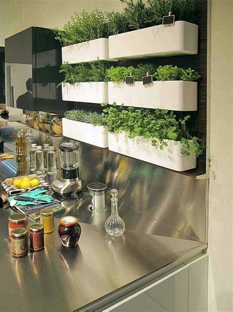 Growing Herbs In Kitchen Window by Herb Shelves In Kitchen House Home