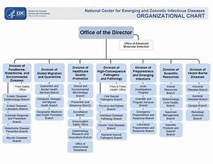 How To Do An Org Chart In Excel Ncezid Organizational Chart Who We Are Ncezid Cdc
