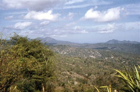 Atabae Ana Unidade Atabae East Timor South East Asia