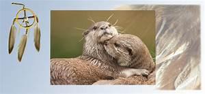 Keltisches Horoskop Berechnen : indianisches horoskop otter norbert giesow ~ Themetempest.com Abrechnung