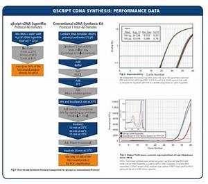 Qscript Cdna Synthesis Kit