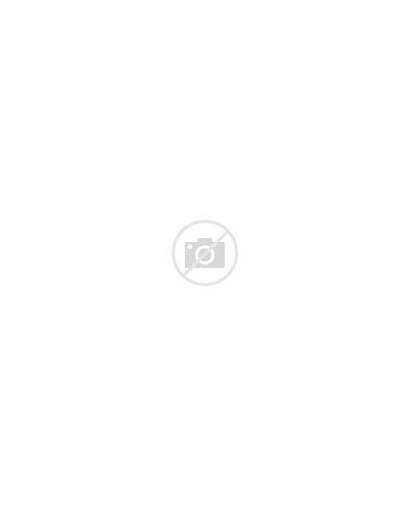 Notebooks Buzzfeed