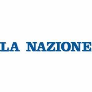 Giant Image Management Diary of Silviamatrilineally Addini based on birth in Pisa, Italy Jus