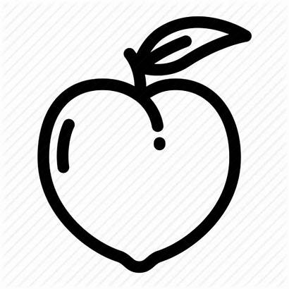 Peach Outline Georgia Icon Clipart Peaches Fruit