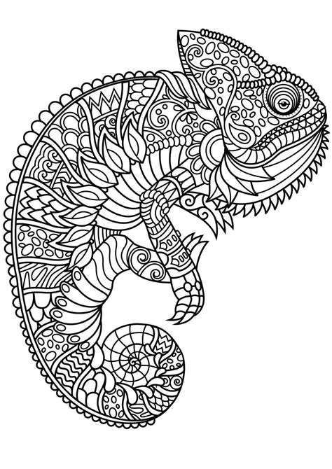 animal coloring pages   adult coloring pages