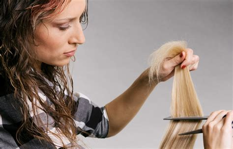 Experienced Hair Stylist by Things Hair Stylists Want To Say But Cannot Salon Price