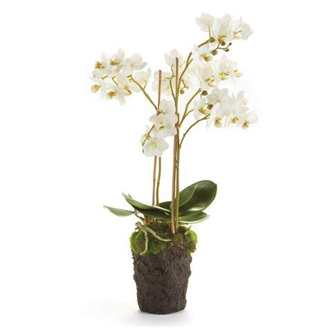 napa home garden 20 inch stem white