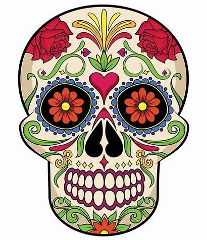 Skull Sugar Clipart Vector Background Skulls Creazilla