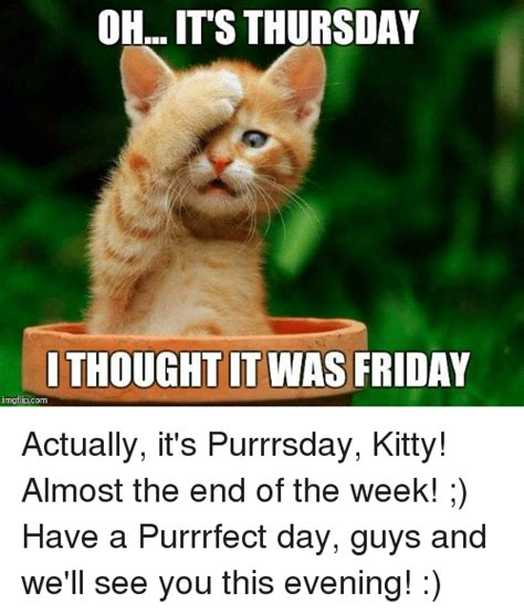 Purrrfect Meme - oh it s thursday ithought it was friday imgflipcom actually it s purrrsday kitty almost the end