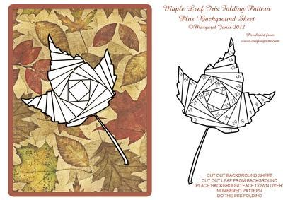 tracing maple leaf iris folding pattern  background