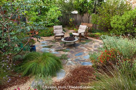 lawn replacement ideas holt 1101 520 cr2 photobotanic stock photography garden library