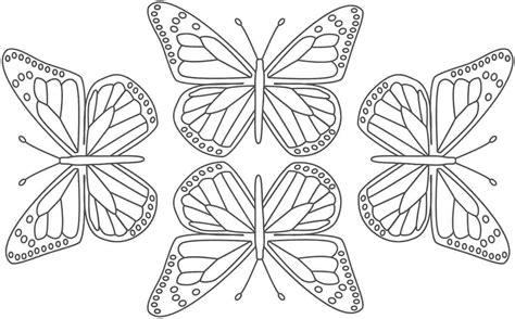 butterflies pages printable butterfly pages  bestofcoloringcom
