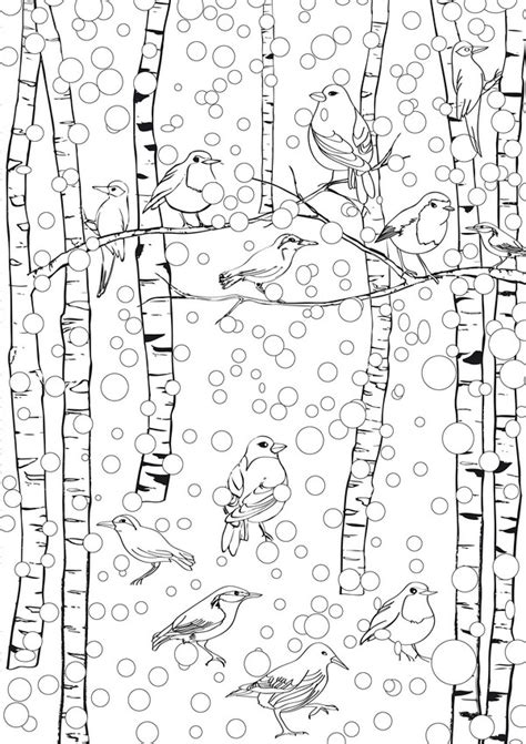winter bird coloring pages   print