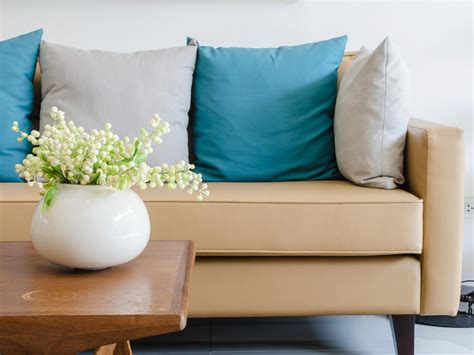 Cleaning Couches by How To Clean A Diy