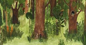 New Children's Books Explore the World in the Woods - The ...