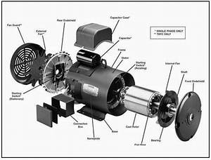 Engineering Photos Videos And Articels  Engineering Search Engine   Single Phase Ac Motor