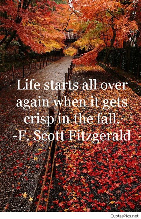 Best Fall Leaves Autumn Sayings, Quotes, Images